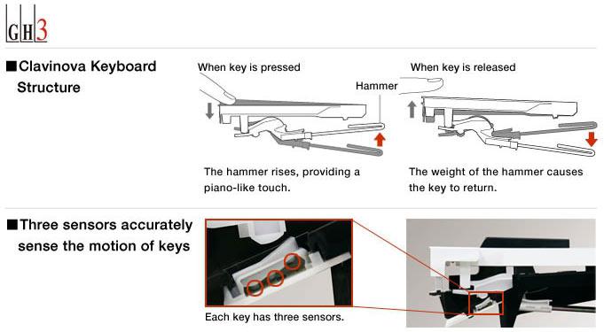 Yamaha YDP164 GH3 Key Action