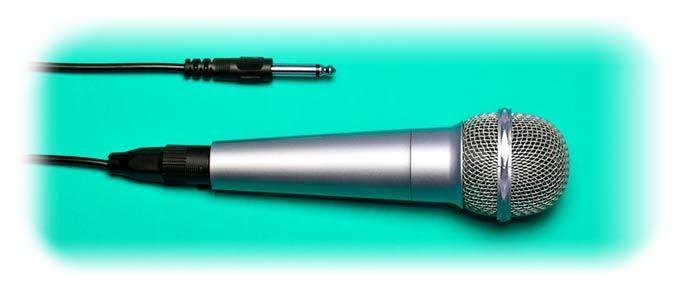 unbalanced mic plug
